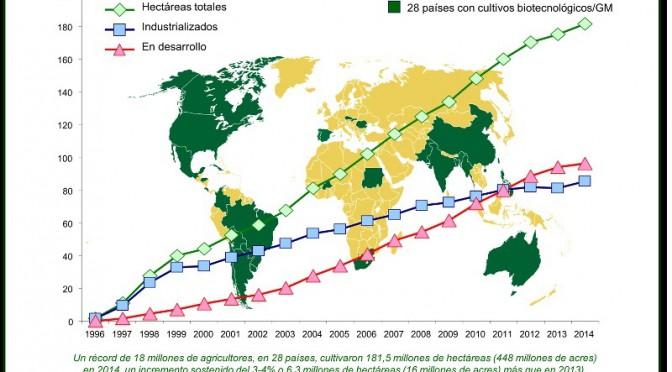 Ganadores y perdedores de la Globalización