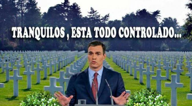 ¿Cuál es el exceso de mortalidad real en España?